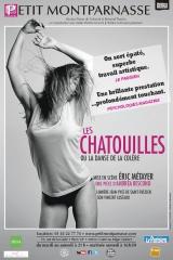 éric métayer,andréa bescond,les chatouilles,théâtre du petit-montparnasse