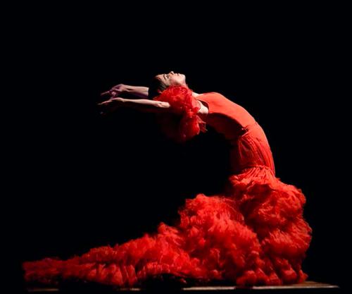 david coria,david lagos,hodierno,alfredo lagos,juan jiménez,daniel muñoz,artomatico,gloria montesinos(a.a.i.),paula comitre,florencia o'ryan,theâtre national de chaillot,flamenco,biennale d'art flamenco,biennale de séville
