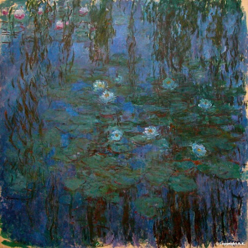 nymphéas,claude monet